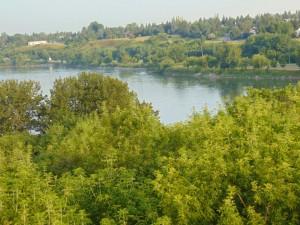 RiverHeights1